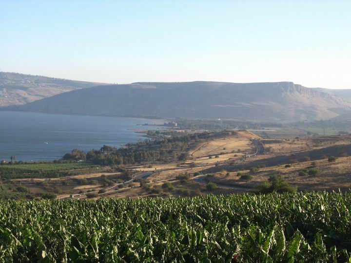 This is the view of Tell Kinneret from the north, on mount beatitudes.