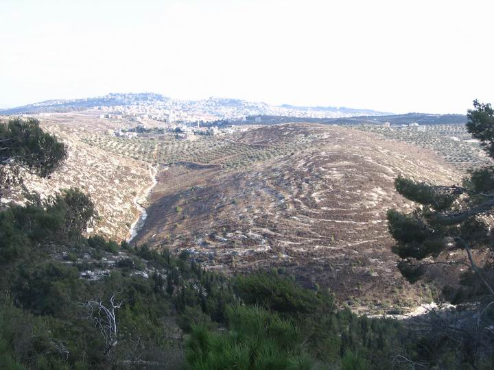 hills of Megiddo, towards South and Um-El-Fakhem