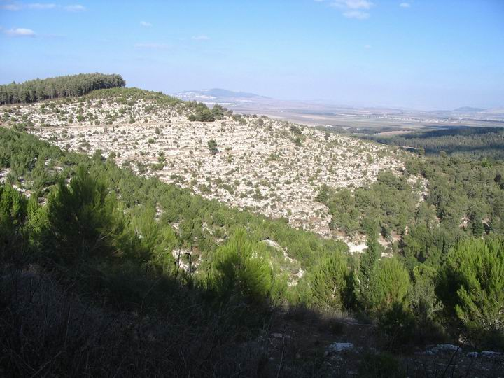 South hills of Megiddo - Armaggedon?