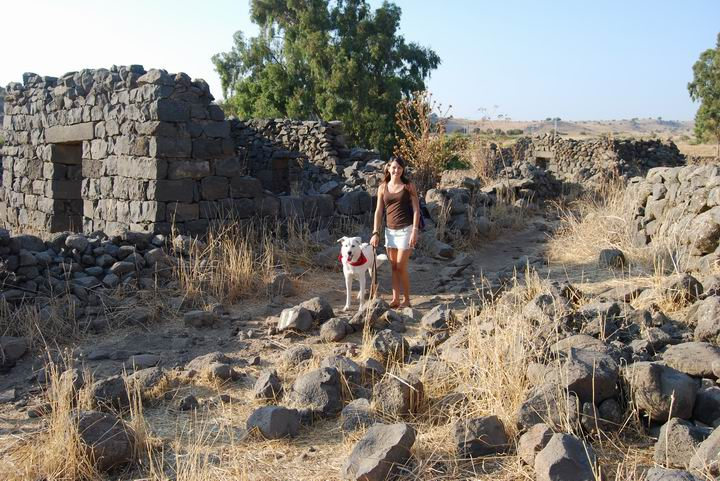 Webmaster Rotem with her Dog, Fiji, in the central road of Kfar Yehudiye