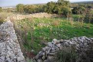 Khirbet Suggar - the sheepfold.