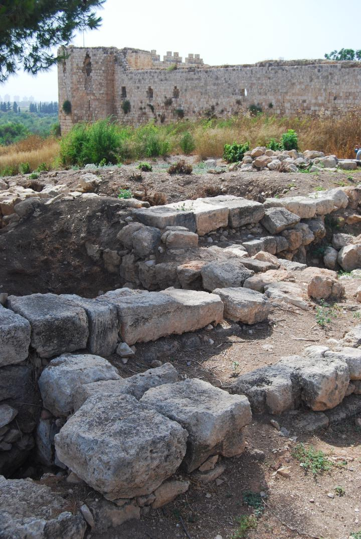 Afek, Sharon: Roman city west of the Cardo; the Fortress is behind