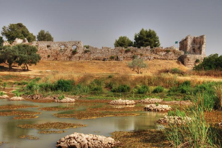 Afek in the Sharon: view from the north