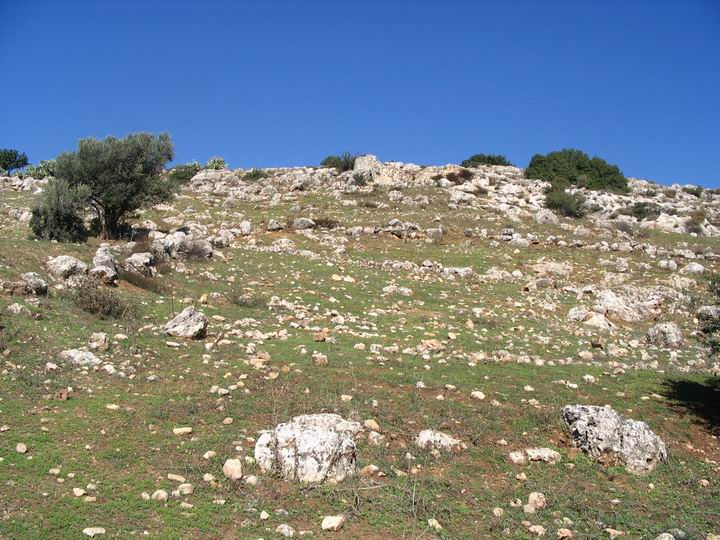 Closer look on the hill side of Kefar Hannania.