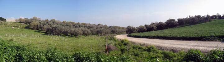 View towards the east from BethLehem in the Galilee.