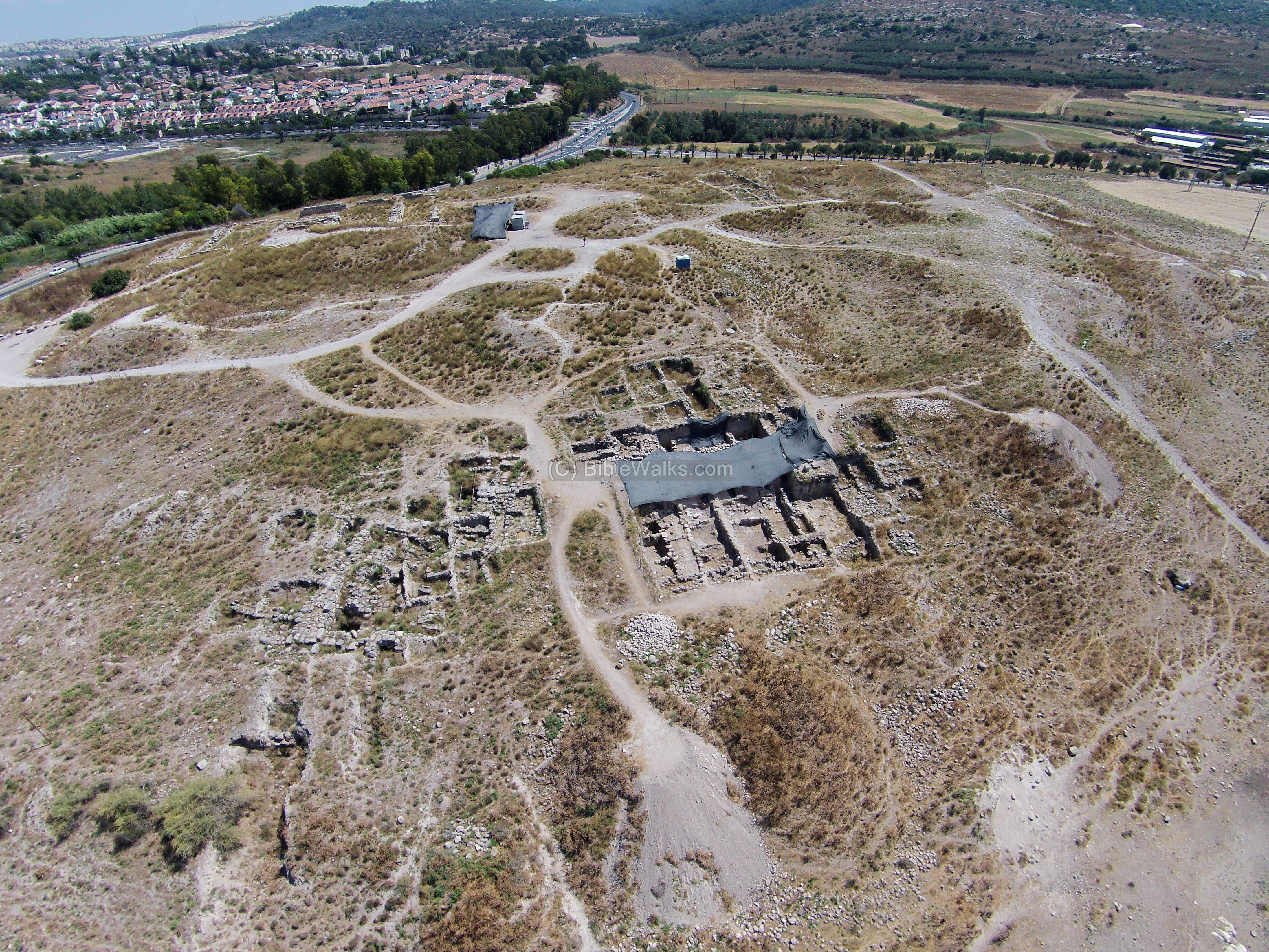 At Beth Shemesh Ark: Tel Beth Shemesh