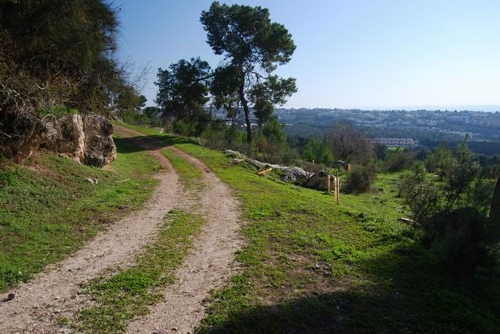 Ma'Alul/Nahalal: south-east road