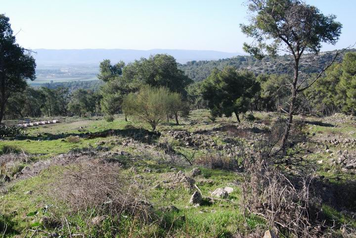 Ma'Alul/Nahalal: ruins of the Arabic town