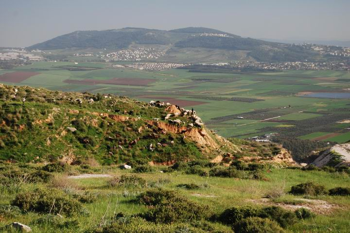 View from the church of Our Lady of the Fright, towards the south-east - Jezreel valley