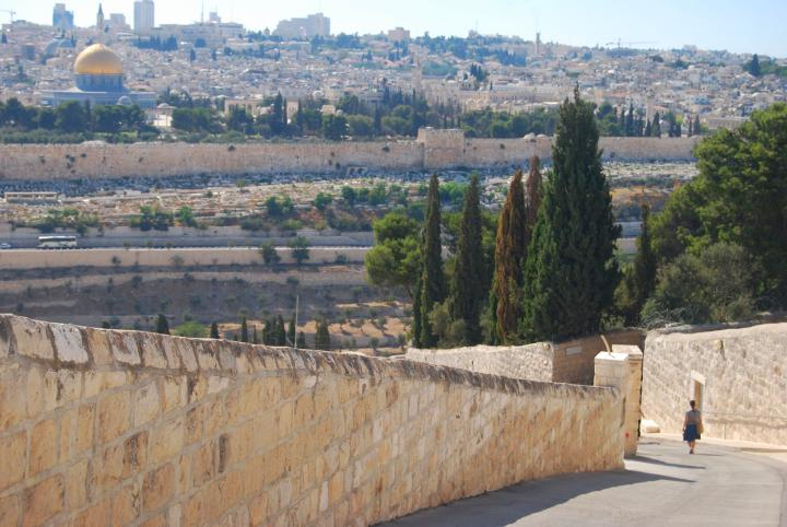 Dominus Flevit: the road that descends from Mt Olives