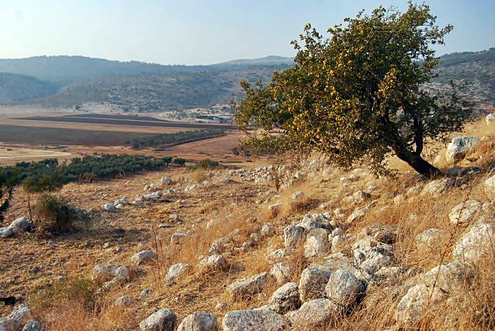Tell Ya'anin: Biblical Ne'iel - view towards the north-west