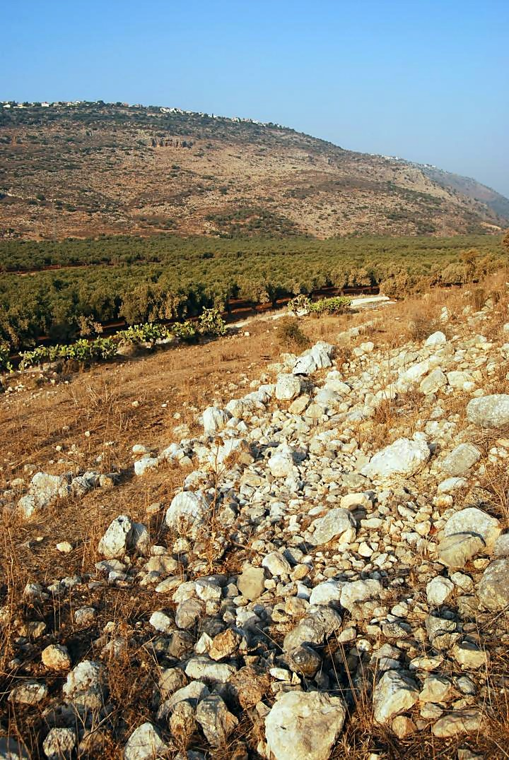 Tell Ya'anin: Biblical Ne'iel - view of the north slopes