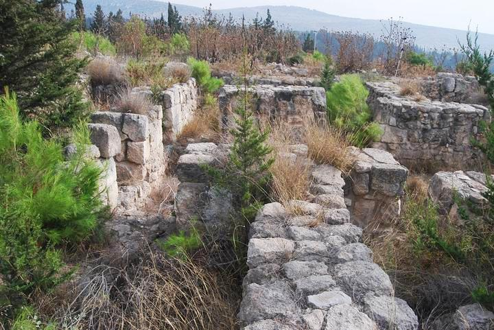Rosh Zayit: view of the citadel