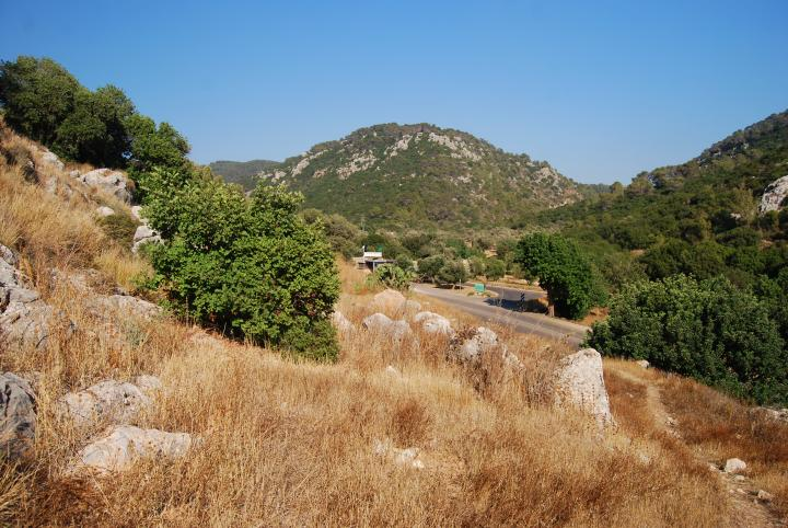 Nahak Oren - pine creek - view eastwards
